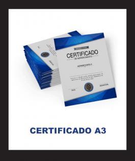 CERTIFICADO A3 Couchê 300gr 4/0